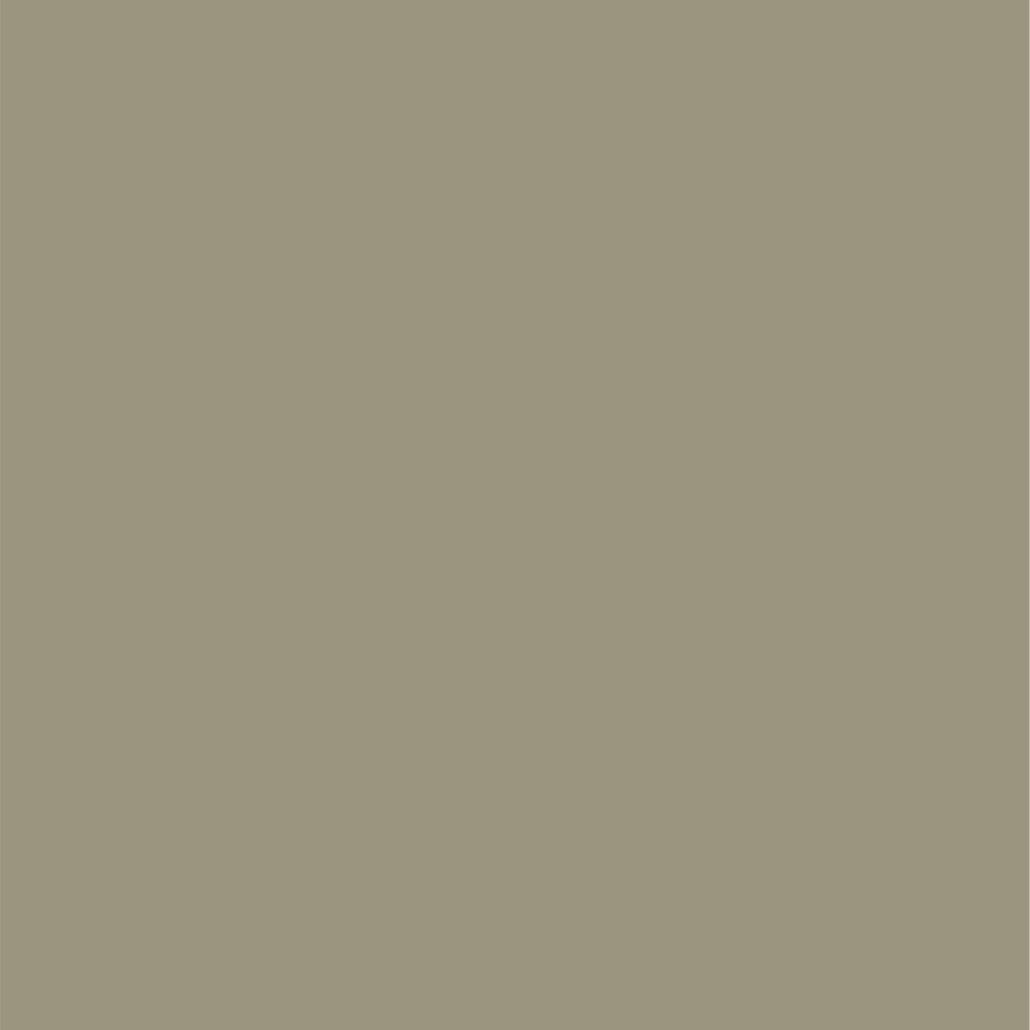 Egyptian Grey No 154
